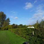 Daisy Bank Shropshire